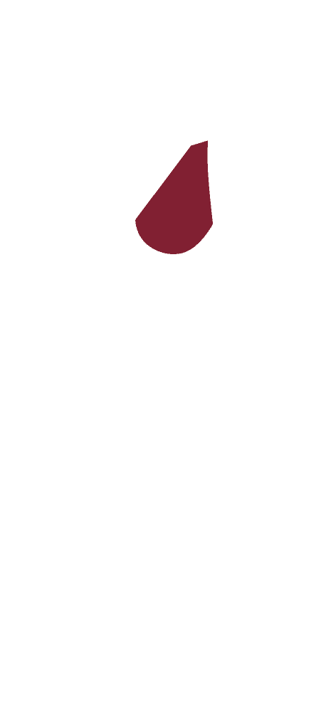 Skizze eines CULT BEEF Rinds, die zeigt, wo sich die Nuss befindet.