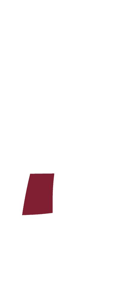 Skizze eines CULT BEEF Rinds, die zeigt, wo sich das Rib-Eye befindet.