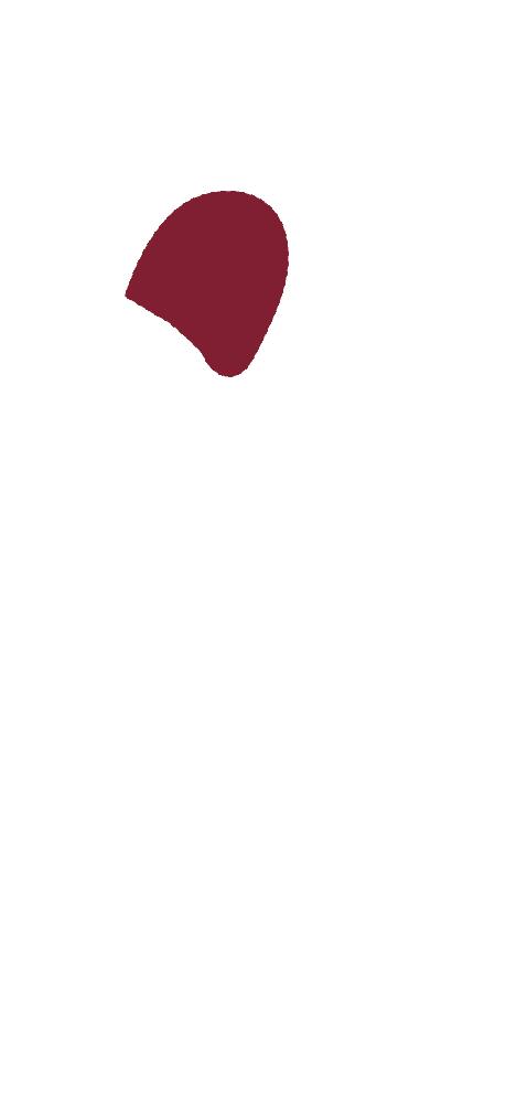 Skizze eines CULT BEEF Rinds, die zeigt, wo sich die Schale befindet.