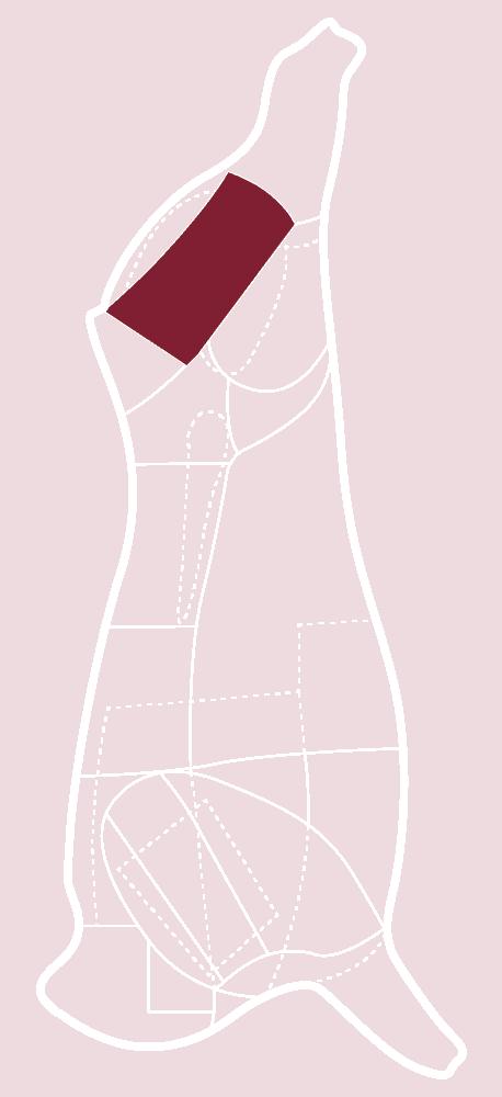 Skizze eines CULT BEEF Rinds, die zeigt, wo sich das Tafelstück befindet.